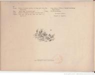 1891-les-races-francaises-de-chiens-darretj-de-coninck3